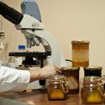 madu asli uji laboratorium