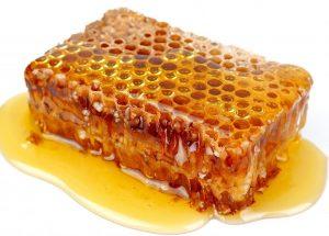 sarang lebah yang matang dan jadi madu