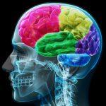 Vitamin Untuk Kecerdasan Otak Anak