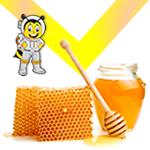 madu murni dan lebah