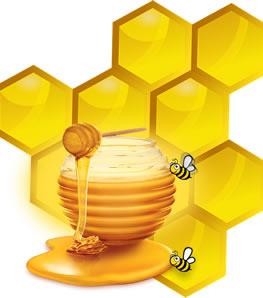 madu untuk batuk